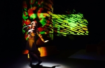 Julie Lewis, Slimmer For Christmas, Theatre at the Mill, Newtownabbey, 2014.